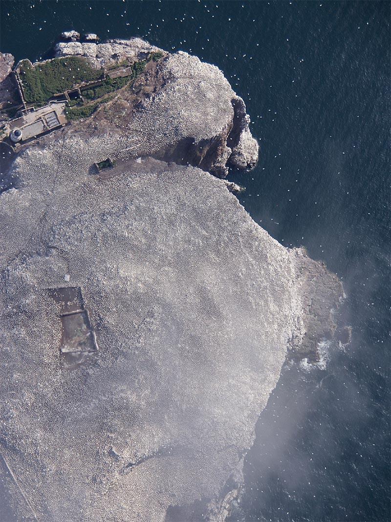aerial photo of scotland